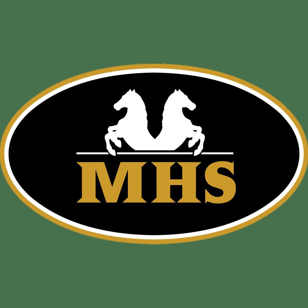 Minihorseshop.nl logo