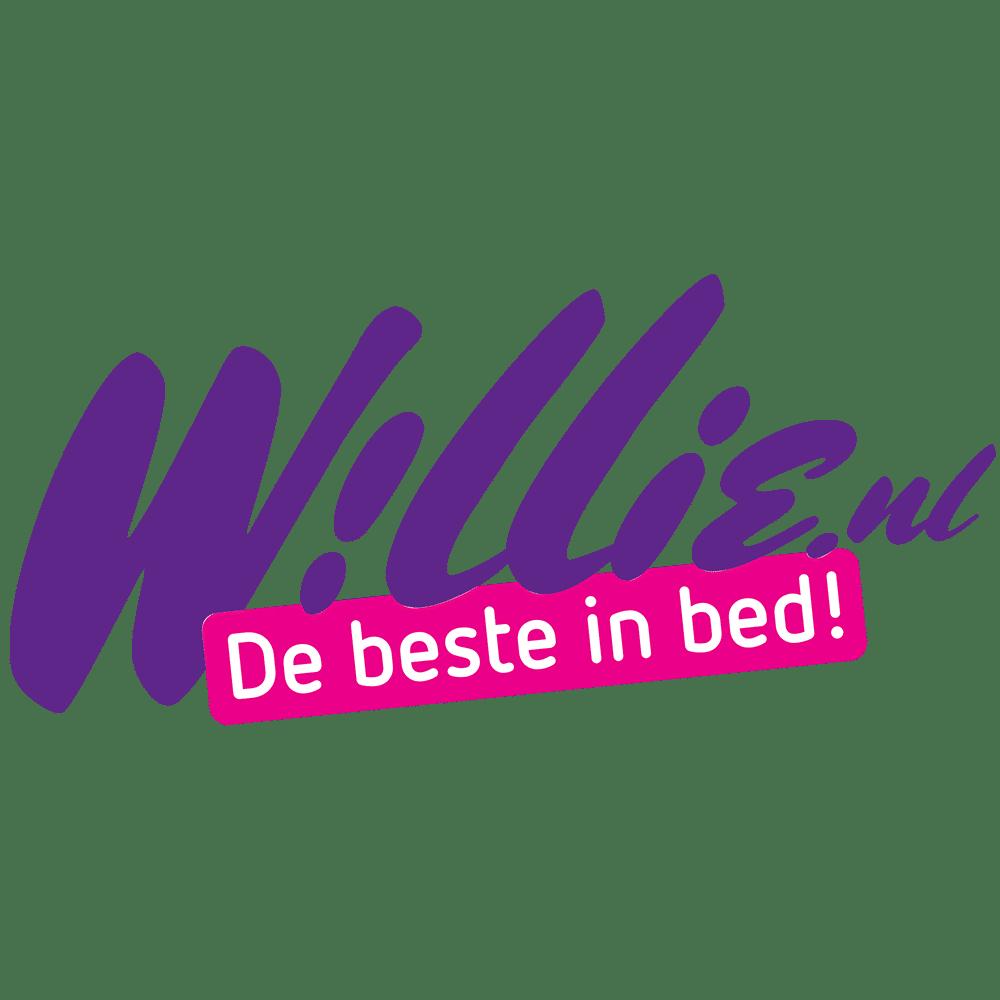Willie.nl achteraf betalen met acceptgiro