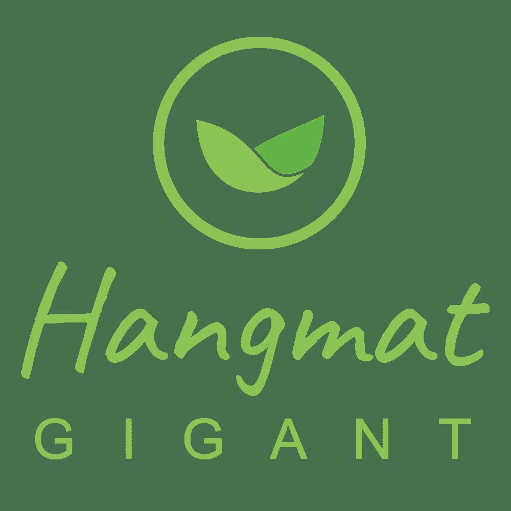 hangmatgigant.nl